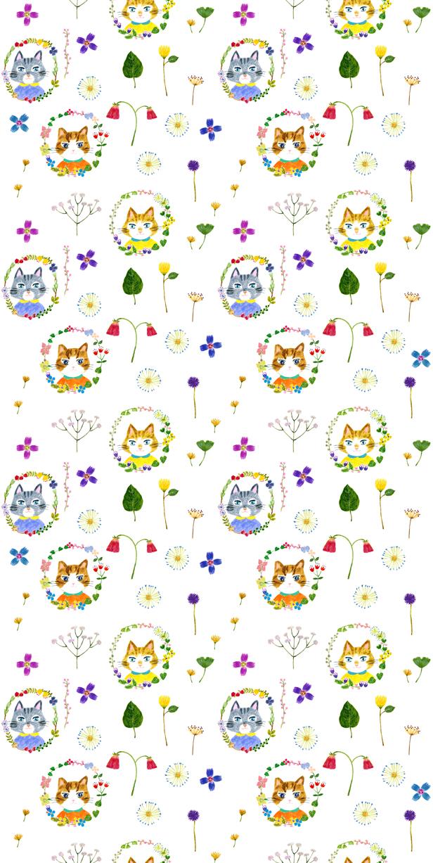 0401_cat